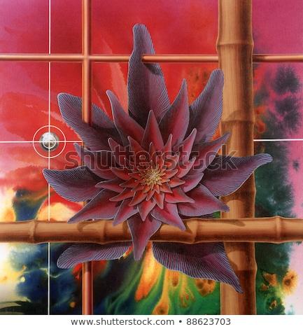 Surrealista flor Foto pintado me progreso Foto stock © prill