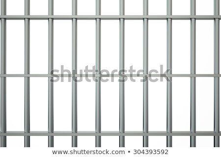 Jail Cell Bars Closeup Stock photo © albund