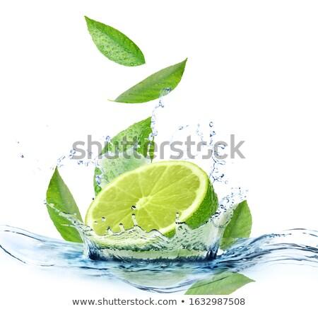 Lime with mint Stock photo © Masha