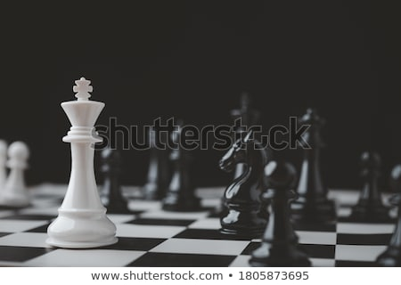Game of Chess Stock photo © nessokv