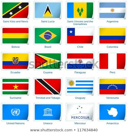 Matrica UN zászló eps10 Európa gomb Stock fotó © SolanD