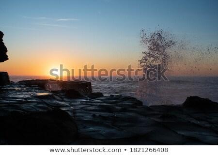 avoca splash stock photo © lovleah