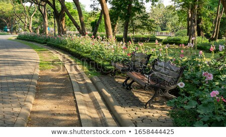 Public Gardens and Bushes greenery and flowers. Stock photo © scenery1