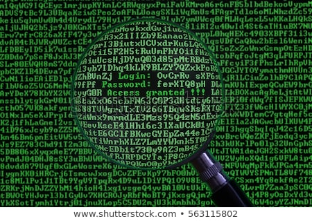 Digital Fraud Through Magnifying Glass. Stock photo © tashatuvango