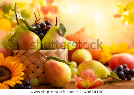 still life basket of red apples and flowers Stock photo © marimorena
