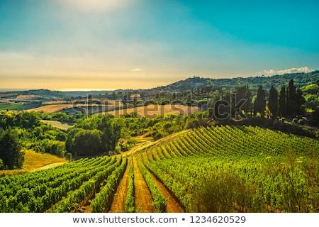 görmek · Toskana · manzara · İtalya · sonbahar · mavi · gökyüzü - stok fotoğraf © hofmeester