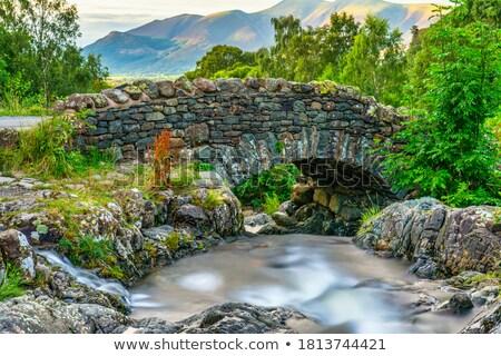 Ponte inglês água árvore estrada Foto stock © chris2766