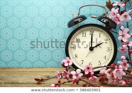 Vintage ретро будильник деревенский синий Гранж Сток-фото © stevanovicigor