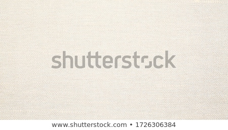 tissue background stock photo © all32