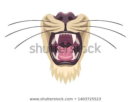 lion mask symbol stock photo © sahua