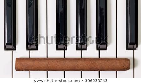 Zongora billentyűzet luxus szivarok részlet művészet Stock fotó © CaptureLight