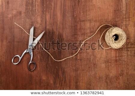 Klasszikus olló zsemle zsinór gombok levél Stock fotó © mady70