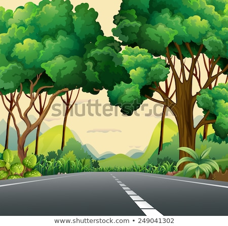 long and wide forest road stock photo © imaster