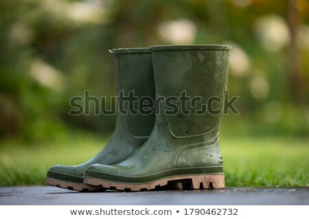 Black rubber boot and soil on white Stock photo © luissantos84