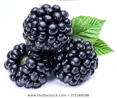 Fresh ripe blackberries Stock photo © Digifoodstock