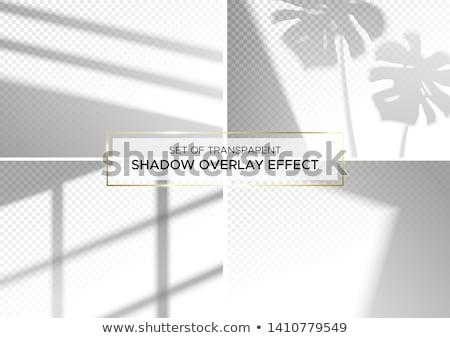 göstermek · dumanlı · sis · şablon · dizayn · parti · soyut - stok fotoğraf © romvo