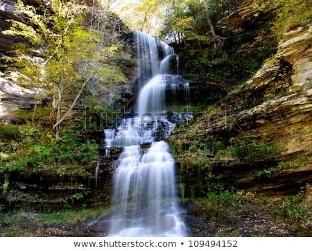 outono · cachoeira · montanha · mata · rochas - foto stock © kotenko