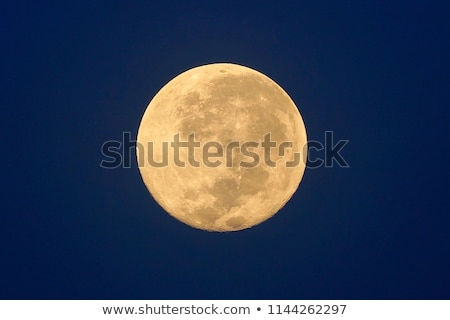 Big full moon night Stock photo © bluering