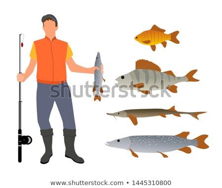 Cartoon · рыбак · иллюстрация · удочка · небольшой - Сток-фото © robuart