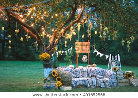Casamento foto decoração festa amor rosa Foto stock © ruslanshramko