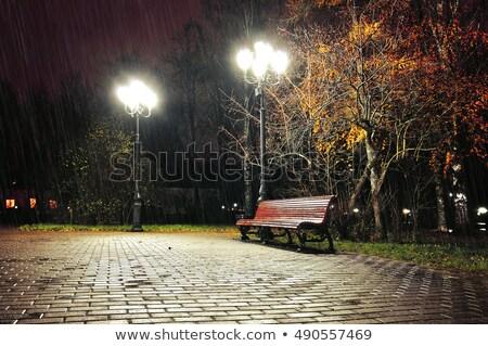 Esik az eső éjszaka park illusztráció textúra fa Stock fotó © colematt