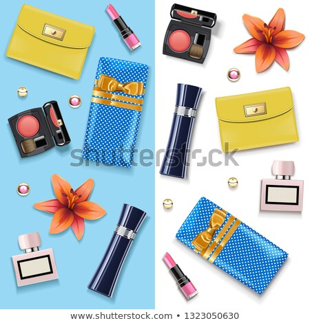 vector female accessories double set 4 stock photo © dashadima