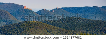 castle Trifels in Palatinate Forest Stock photo © LianeM