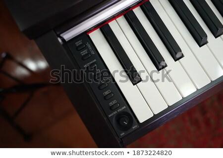 Obraz elektronicznej musical klawiatury nowoczesne Zdjęcia stock © amok