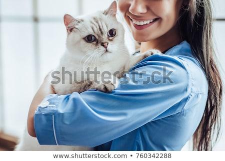 állatorvosi megvizsgál fehér macska fiatal nő Stock fotó © smithore