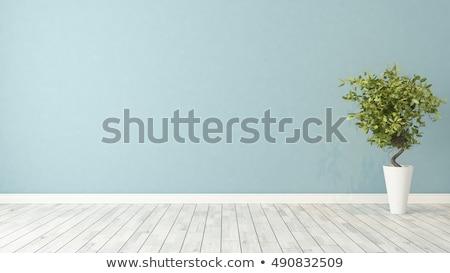 duvar · zemin · yıpranmış · ahşap · doku · karanlık - stok fotoğraf © witthaya