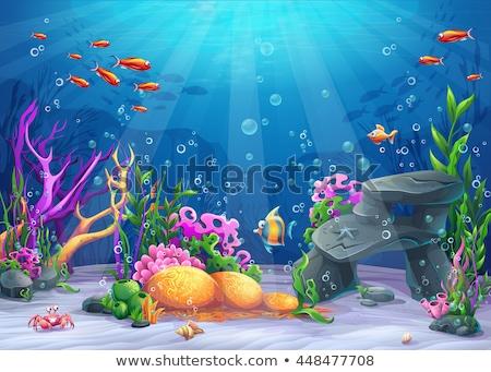аннотация океана тропические рыбы глубокий пляж фон Сток-фото © ajlber