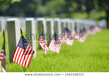 Military cemetery Stock photo © Gbuglok