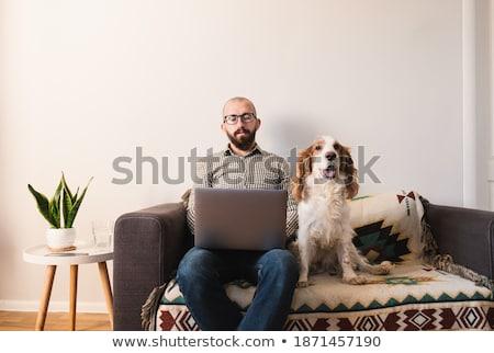 молодым человеком сидят диване работу красивый мужчина рабочих Сток-фото © justinb