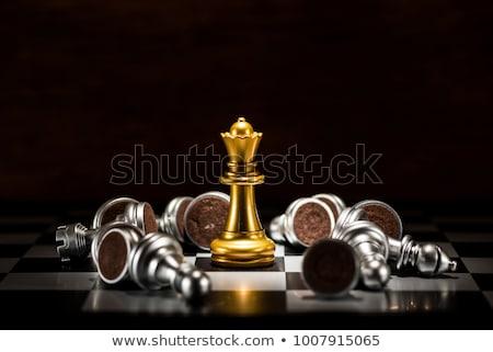 Xadrez rainha jogar em pé isolado Foto stock © sqback