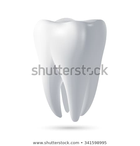 3D human tooth isolated on white background. Stock photo © lenapix