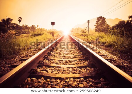 train tracks at sunset stock photo © vlad_star