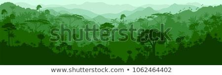 Dzsungel hátterek zöld réteges illusztráció könnyű Stock fotó © DzoniBeCool