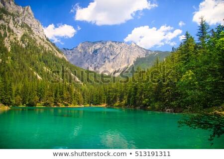 参照してください オーストリア 森林 自然 山 夏 ストックフォト © tommyandone