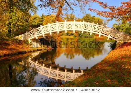 English Grounds of Woerlitz White Bridge  Stock photo © LianeM