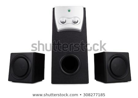 fekete · kettő · hangszóró · izolált · fehér · audio - stock fotó © shutswis