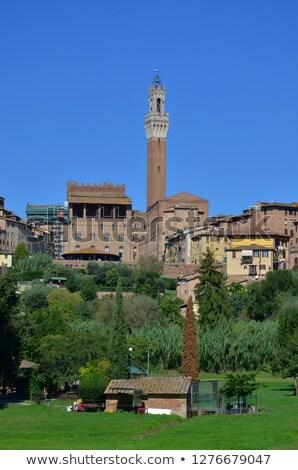 Tower Torre del Mangia .Siena.Italy Stock photo © meinzahn
