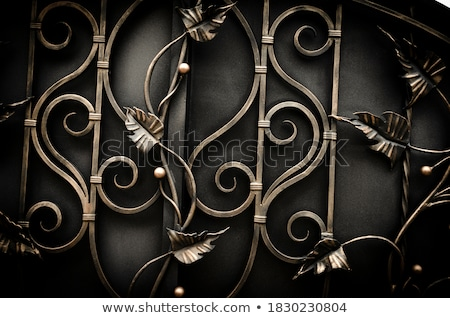 beautiful forged fence stock photo © h2o