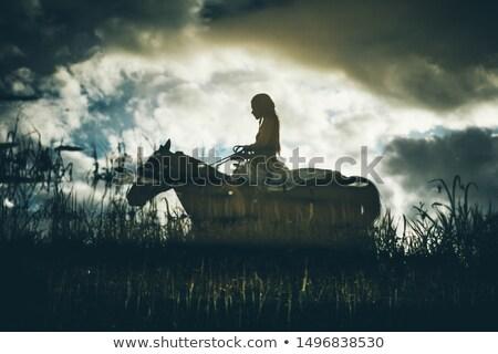 indiai · ló · naplemente · illusztráció · férfi · természet - stock fotó © adrenalina