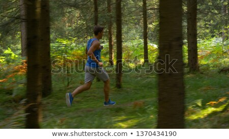 Homme bois forêt paysage désert jambes Photo stock © papa1266
