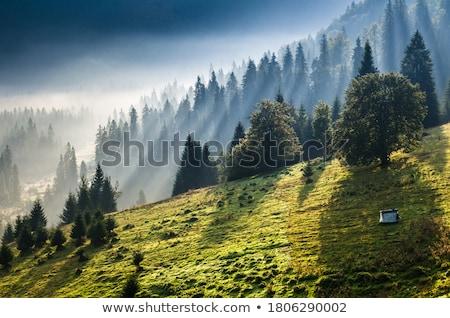 Tél reggel hegy falu fából készült ház Stock fotó © Kotenko