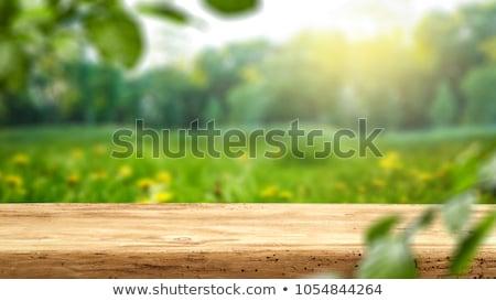 Edad mesa de madera Blur naturaleza vacío listo Foto stock © smuay