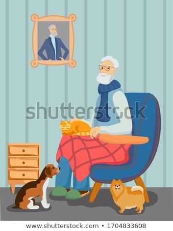 Stock fotó: Nagypapa · haverok · díszállat · réteges · illusztráció · könnyű