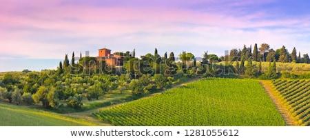 Italia · paisaje · puesta · de · sol · Toscana · colinas - foto stock © konstanttin