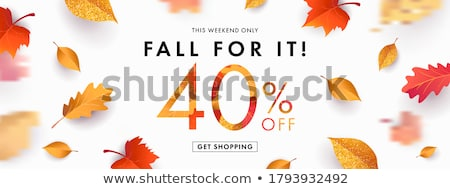 Autumn Sale Banner With Leaf Stock photo © barbaliss