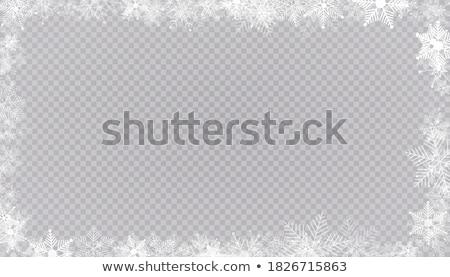Vector winter frame sneeuwvlokken geïsoleerd eps Stockfoto © jara3000